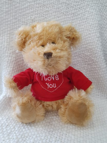Traditional Teddy with a I love you Jumper